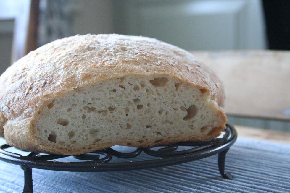 Eltefritt havrebrød uten gluten